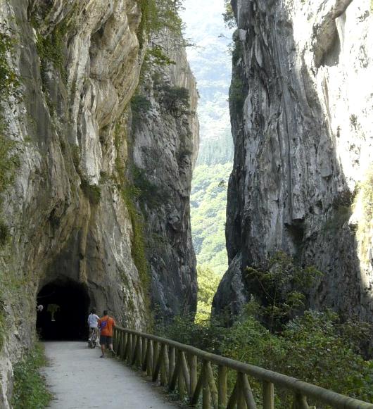 Escapada senda del oso en Asturias